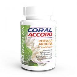 Коралл-Аккорд (Coral-Accord)